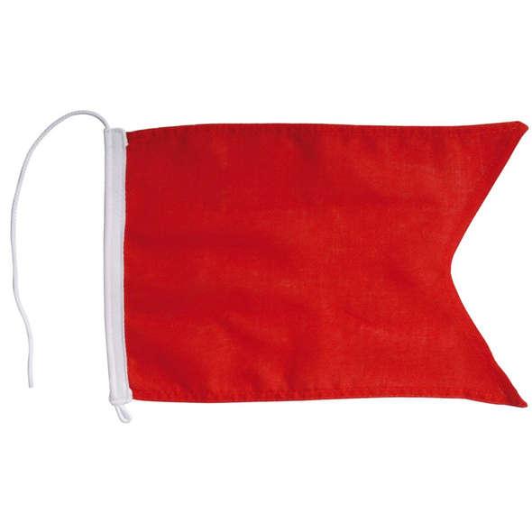 Bandiera di Protesta Regata cm 20 x 30