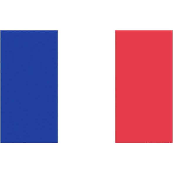 Bandiera Francia Pesante cm 20 x 30