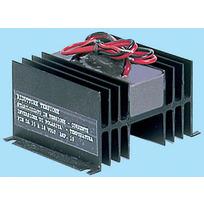 Convertitore di tensione elettronico 14A